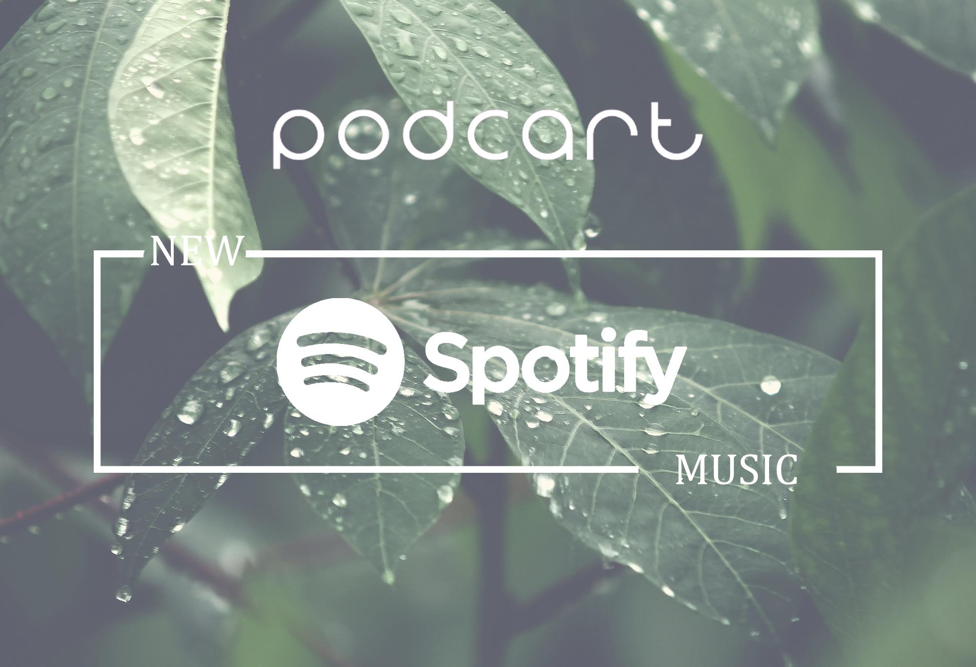 Podcart's Spotify Playlist 17