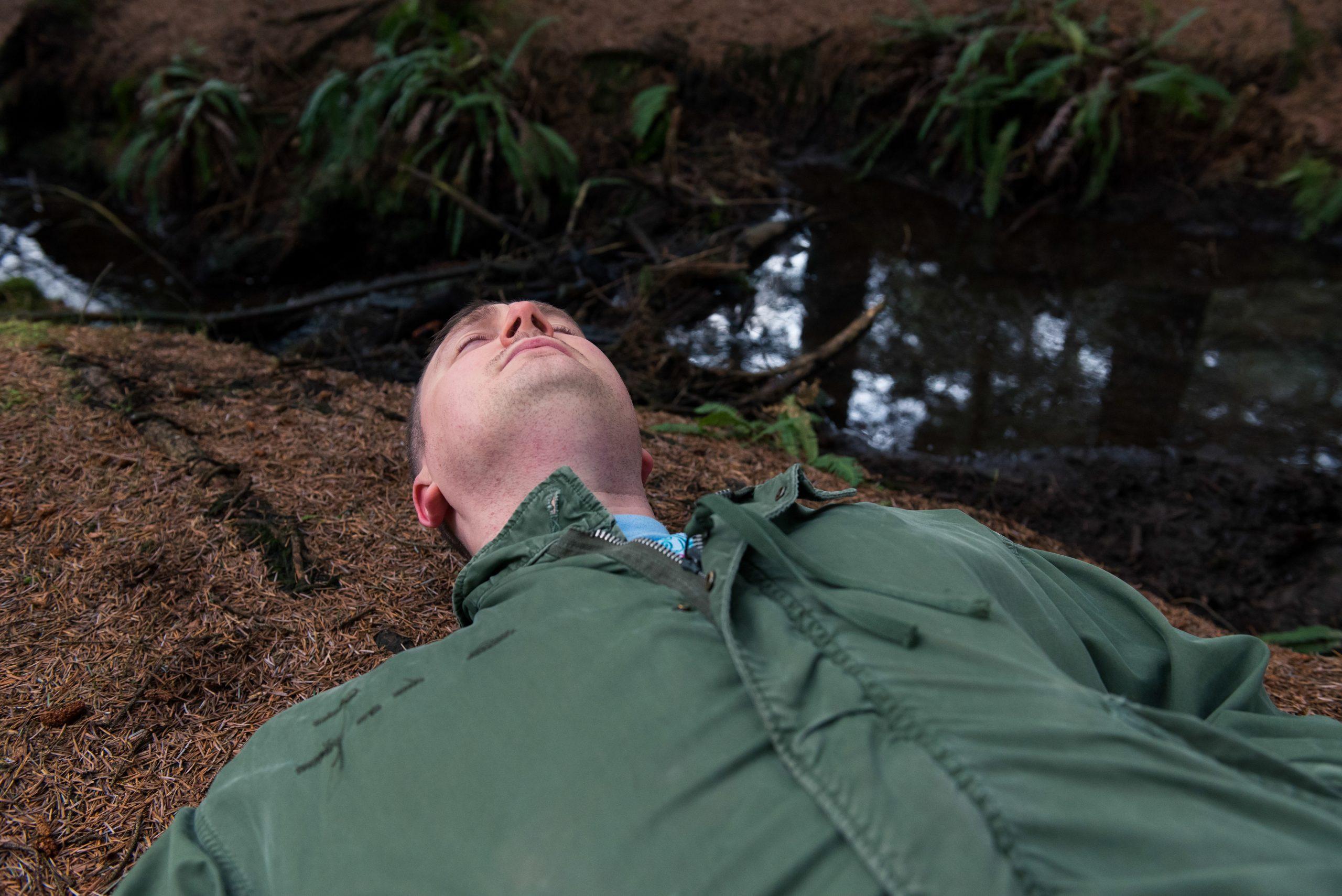 Adam Stafford: 'Threnody for February Swallows'